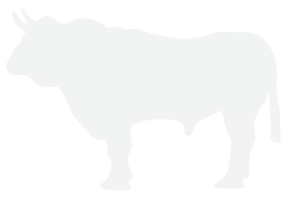 Bull-Kaffee Logo_White